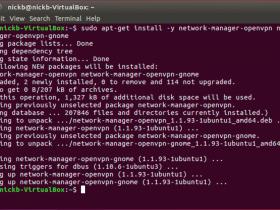 Linux安装VyprVPN的OpenVPN协议方法(Ubuntu)